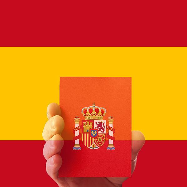 Sanzioni garante privacy Spagna